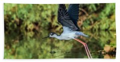 Black-necked Stilt 4687-091017-2cr Hand Towel