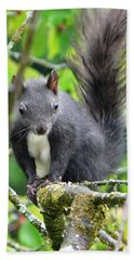 Black Squirrel In The Cherry Tree Hand Towel