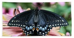 Black Swallowtail 3 Hand Towel