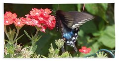 Black Swallowtail  Bath Towel