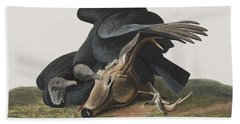 Black Vulture Or Carrion Crow Hand Towel