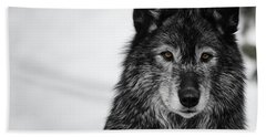 Black Wolf I Bath Towel