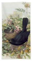 Blackbird,  Hand Towel by John Gould