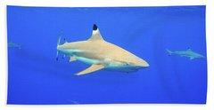 Blacktip Reef Shark Hand Towel