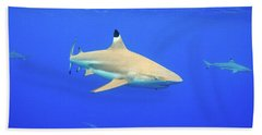 Blacktip Reef Shark Bath Towel
