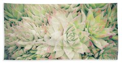 Hand Towel featuring the photograph Blanket Of Succulents by Ana V Ramirez