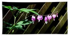 Bleeding Hearts All In A Row Bath Towel