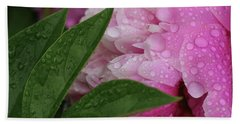 Blessings Of The Rains Hand Towel by Rachel Cohen