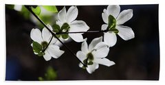 Blooming Dogwoods In Yosemite 4 Hand Towel