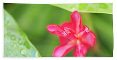 Blooming Red Ginger Hand Towel