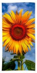 Blooming Sunflower  Hand Towel