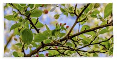 Blossoms And Leaves Hand Towel
