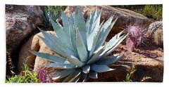 Hand Towel featuring the photograph Blue Agave by Kathryn Meyer