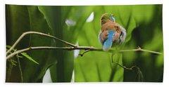 Blue Bird Has An Itch Hand Towel