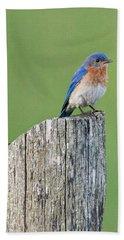 Blue Bird On Cedar Post Bath Towel