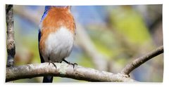 Hand Towel featuring the photograph Blue Bird by Ricky L Jones
