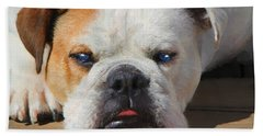Blue-eyed English Bulldog - Painting Hand Towel