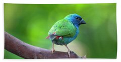 Blue-faced Parrotfinch Bath Towel