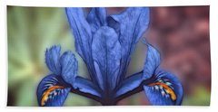 Blue Flag Iris Hand Towel