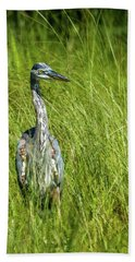 Bath Towel featuring the photograph Blue Heron In A Marsh by Paul Freidlund