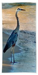 Blue Heron On The Beach Close Up Hand Towel