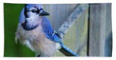 Blue Jay Fluffed Hand Towel