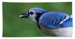 Blue Jay With Seed Bath Towel