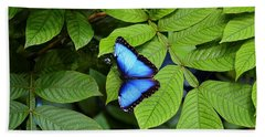 Blue Leaves - Morpho Butterfly Hand Towel