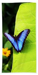 Blue Morpho Butterfly Hand Towel