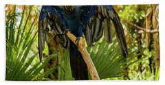 Blue Parrot Hand Towel