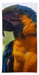 Blue Parrot Bath Towel