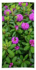 Blue Ridge Mountains Rhododendron Blooming Hand Towel