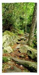 Bath Towel featuring the photograph Blue Ridge Parkway Hiking Trail by Meta Gatschenberger