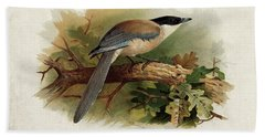 Blue Winged Magpie By Thorburn Hand Towel