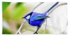 Hand Towel featuring the photograph Blue Wren, Margaret River by Dave Catley
