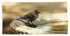 Hand Towel featuring the photograph Bluebird Bath Time by Sheila Brown