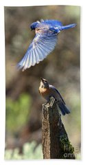 Bluebird Buzz Hand Towel by Mike Dawson