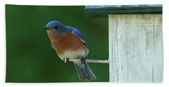 Bluebird Hand Towel