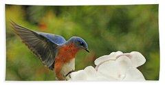 Bluebird Landing On Orchid Hand Towel by Luana K Perez