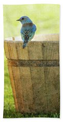 Bluebird Resting On Bucket, Textured Hand Towel