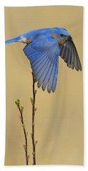 Bluebird Takes Flight Bath Towel