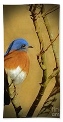 Bluebird Waiting For Spring Hand Towel