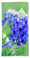 Bluebonnets 071616 Hand Towel
