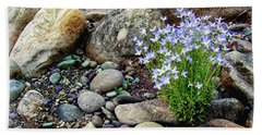 Bluets Among The River Rocks Hand Towel