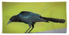 Boat-tailed Grackle Male Hand Towel