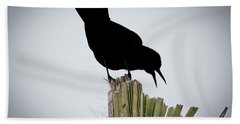 Boat-tailed Grackle Silhuoette Hand Towel