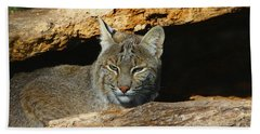 Bobcat Hiding In A Log Bath Towel