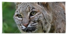 Bobcat In The Trees Hand Towel