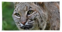 Bobcat In The Trees Bath Towel