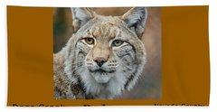Bobcat - Lynx Rufus Hand Towel